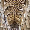 Exeter Cathedral And Organ by Jenny Setchell