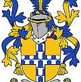 Exham Coat Of Arms Irish by Heraldry