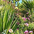 Exotic Hillside Garden by Cherie Cokeley