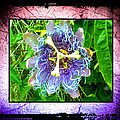 Exotic Strange Flower by Absinthe Art By Michelle LeAnn Scott