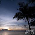 Exotic Sunrise by Antony McAulay