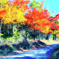 Explosion Of Color - Blue Ridge Mountains II by Dan Carmichael
