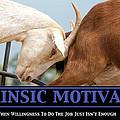 Extrinsic Motivation De-motivational Poster by Lisa Knechtel