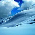 Eye Catcher In Snow by Colette V Hera  Guggenheim