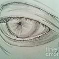 Eye by Collin A Clarke