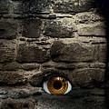 Eye In Brick Wall by Amanda Elwell
