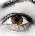 Eye by Mats Silvan