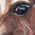 Eyebrow Cat by Linda L Martin