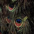 Eyes by Alfredo Martinez