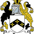 Eyre Coat Of Arms Irish by Heraldry