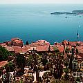 Eze France by Phill Petrovic