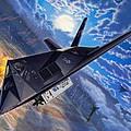 F-117 Nighthawk - Team Stealth by Stu Shepherd