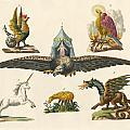 Fabulous Animals by Splendid Art Prints