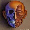 Face Anatomy by Tish Wynne