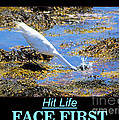 Face First by Joe Geraci