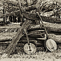 Faded Country Time Banjos by Bill Cannon