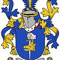 Fahey Coat Of Arms Irish by Heraldry