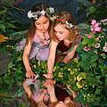 Fairies And Dragonflies by Wolfgang Hauerken