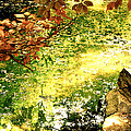 Fairies by HweeYen Ong