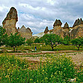 Fairy Chimneys In Cappadocia-turkey by Ruth Hager