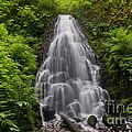 Fairy Falls In Spring by Jackie Follett