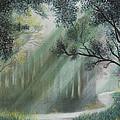 Fairy Glen by John Hebb