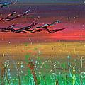 Fairy Moon by Jacqueline Athmann