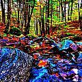 Fall 2014 Ultra 36 by George Ramos