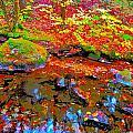 Fall 2014 Y212 by George Ramos
