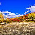 Fall All Around by Mark David Zahn Photography