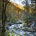 Fall Along Citico Creek by Debra and Dave Vanderlaan