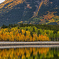 Fall Along The Forebay by Morris  McClung
