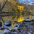 Fall Along The Scenic River by David Dufresne