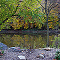 Fall Along The Scioto River by Karen Adams