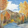 Fall Aspens by Phyllis Howard