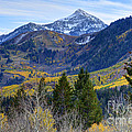 Fall At Cascade Peak And Sundance From Alpine Loop  by Gary Whitton