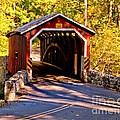 Fall At Kurtzs Mill Covered Bridge by Nick Zelinsky