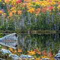 Fall At Sandy Stream Pond by Dave Cleaveland