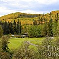 Fall At The Course by Alanna DPhoto