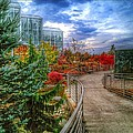 Fall At The Gardens by Christopher Foote