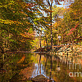 Fall At Valley Creek  by Rima Biswas