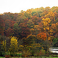 Fall At Valley Forge by Skip Willits