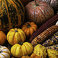 Fall Autumn Abundance by Garry Gay