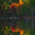 Fall Beauty by Donna Brown