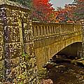 Fall Bridge by Larry Bishop