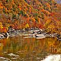 Fall Brilliance At New River by Adam Jewell