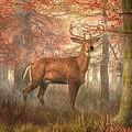 Fall Buck by Daniel Eskridge