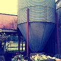 Fall City Farm  by Barbara Christensen