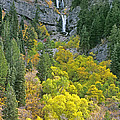 Fall Color And Waterfalls In Provo Canyon Utah by Dave Welling