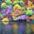 Fall Color by Annette Tan